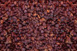 Californische blauwe rozijnen en nog veel meer bessen en rozijnen van topkwaliteit vindt u bij de Notenkoning.