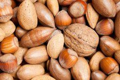Iedere dag de allerbeste gemengde noten in dop of een van onze andere notenmixen vers van de Notenkoning.